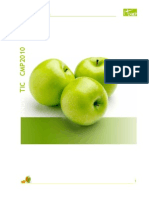 PLAN ESTRATÉGICO CMPTIC 2010-2013