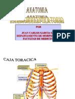 Anatocardiorespiratorio[1]