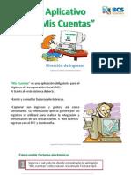 Manual Mis Cuentas
