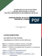 1era Clase MAIS Marco, Principios Dimensiones 2013 (1)
