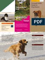Cornwall Dog Friendly Beaches