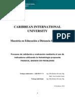 Metodologia Evaluacion Validacion CIU