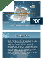 Capítulo 1 Sistemas de Información