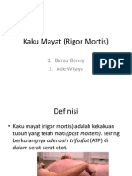 Kaku Mayat