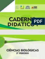 caderno_didatico 2