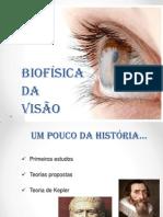 Seminário  Biofísica da Visão (1)
