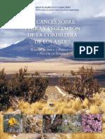 Alcances Sobre Flora y Vegetacion de La Cordillera de Los Andes