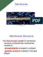 5 Membranes