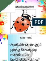 Kolaj Kumbang LadyBird