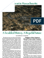 brook trout article