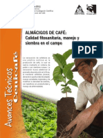 2011-CENICAFE-Avance_Tecnico_404-Alamacigos de Café