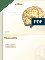 CNS Brain Anatomy Pics