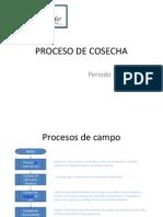 Proceso de Cocecha 2013-2014