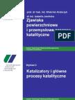 W2 2011 katalizatory