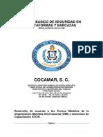 MANUAL DEL PARTICIPANTE BASICO DE SEGURIDAD EN PLATAFORMAS Y BARCAZAS vior.pdf