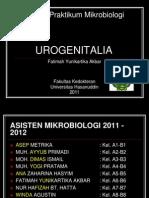 Urogenitalia Inter 2012