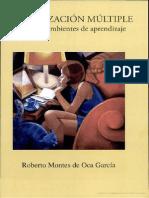 Alfabetización múltiple en nuevos ambientes de aprendizaje Escrito por Roberto Montes de Oca García