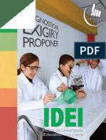 IDEI_2009-2013.pdf