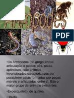 Art Ro Podes 23082011