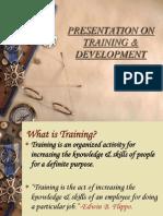 trainingdevelopment