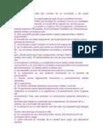 profundizacion filosofia 2001