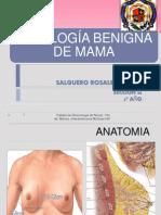 Patología Benigna de Mama