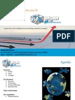 IT Company Software Profile