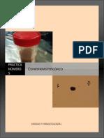 MGII Practica 5 Coproparasitoscopico