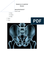 Bazinul Osos Si Craniul Fetal Rezumat