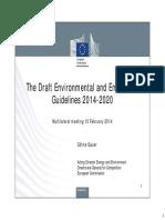 Presentations EEAG Multilateral 10-02-2014 No Notes