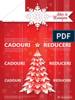 20131126 - Poster Decembrie 2013