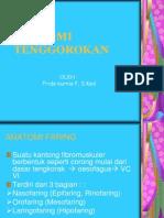 ANATOMI TENGGOROKAN