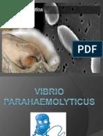 Vibrio Parahaemolyticus.