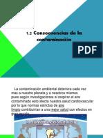 1.2 Concecuencias de La Contaminacion Bjm.
