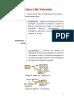 enzimas1.pdf