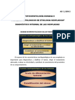 MFPH II - AO 01.pdf