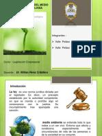 6. Ley De La Protección Del Medio Ambiente Y La Ecología