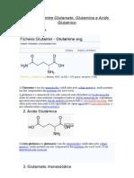 Diferença entre Glutamato,Acido Glutamico e Glutamina
