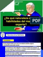 Reflexiones Sobre Competencias Profesionales Del Maestro.