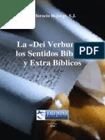 P. Bojorge - La Dei Verbum y los Sentidos Bíblicos y Extra Bíblicos