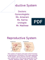 Reproductive System Period 8