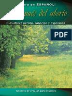 Abortion Pamphlet Spanish