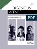 Selfdetermination Indigenous Affairs