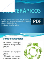 Seminário - Fitoteráicos