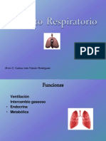 Aparato Respiratorio2