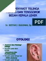 Bestari, Anatomi Telinga