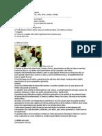enfermedades uva.docx