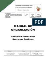 MANUAL DE ORGANIZACIÓN DGSP2011 I
