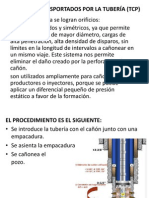 CAÑONES TRANSPORTADOS POR LA TUBERÍA (TCP).pptx