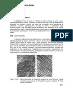 Aposti4_Nutrição Mineral de Plantas
